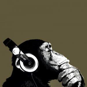 Mono pensando en saxofón eléctrico